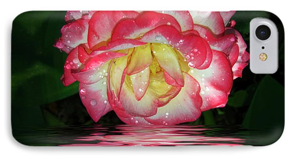 Nice Rose IPhone Case by Elvira Ladocki