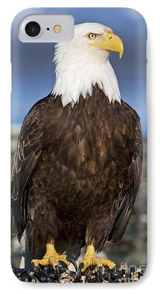 A Bald Eagle Phone Case by John Hyde - Printscapes