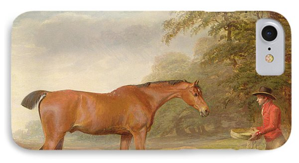 A Bay Horse IPhone Case