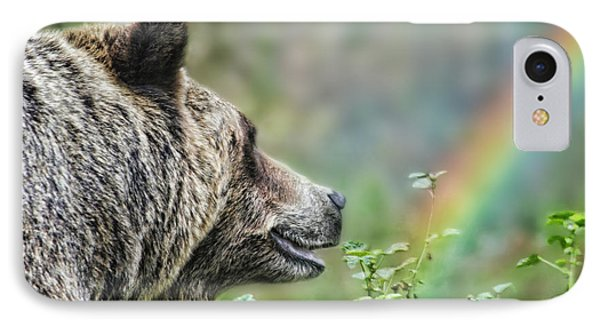 A Bear Watching The Sun Return IPhone Case by Jim Fitzpatrick