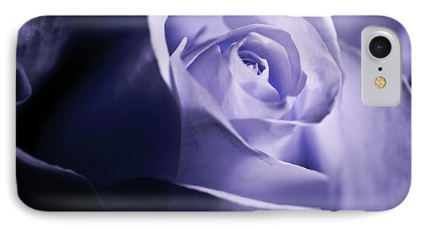 A Beautiful Purple Rose IPhone Case by Micah May