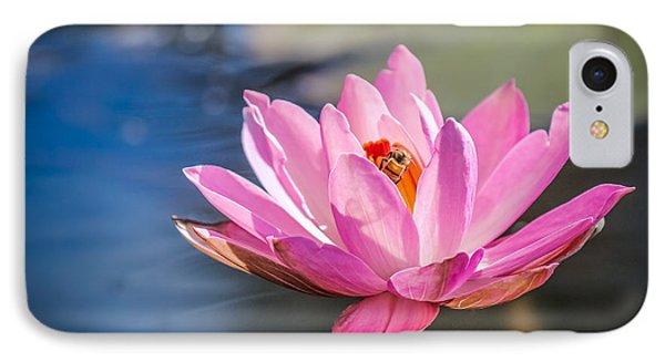 A Bee's Treasure 2 IPhone Case by Liesl Walsh