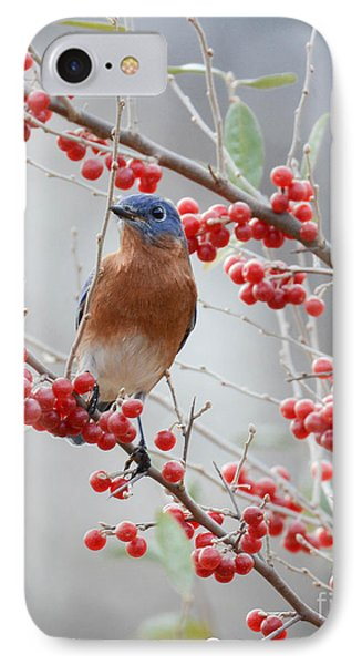 A Berry Good Morning IPhone Case by Amy Porter