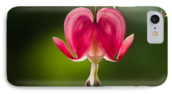 A Bleeding Heart          IPhone Case by Bruce Pritchett