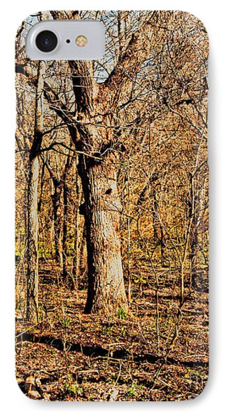 A Bottomland Pecan IPhone Case by Gary Richards