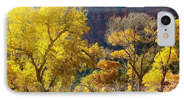 A Bright Gathering Of Trees IPhone Case