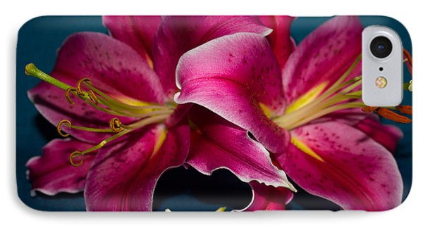 A Bunch Of Beauty IPhone Case by Roberta Byram