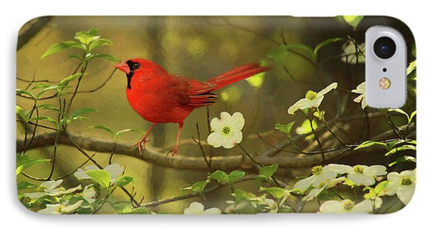 IPhone Case featuring the photograph A Cardinal And His Dogwood by Darren Fisher