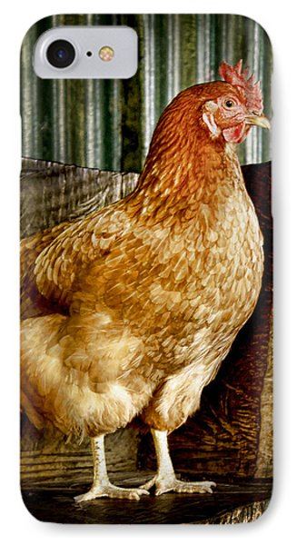 A Chicken Named Rembrandt IPhone Case by Holly Kempe