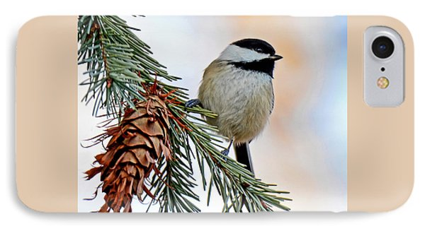 IPhone Case featuring the photograph A Christmas Chickadee by Rodney Campbell