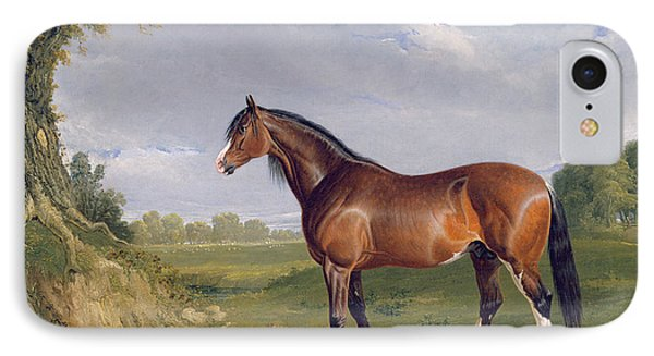 A Clydesdale Stallion Phone Case by John Frederick Herring Snr