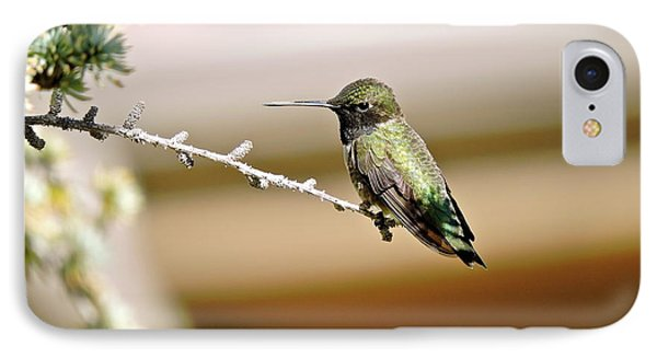 A Contented Hummer IPhone Case