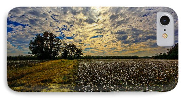 A Cotton Field In November IPhone Case by John Harding