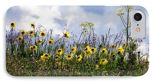 A Daisy Day IPhone 7 Case by Karen Shackles