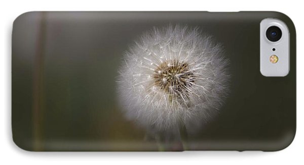 IPhone Case featuring the photograph A Dandelion by Lora Lee Chapman