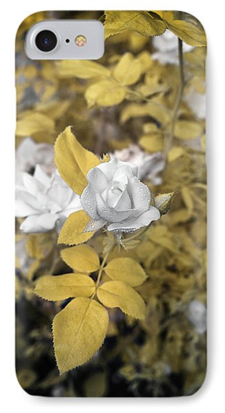 A Day In The Garden IPhone Case by Paul Seymour