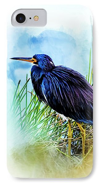 A Day In The Marsh IPhone Case
