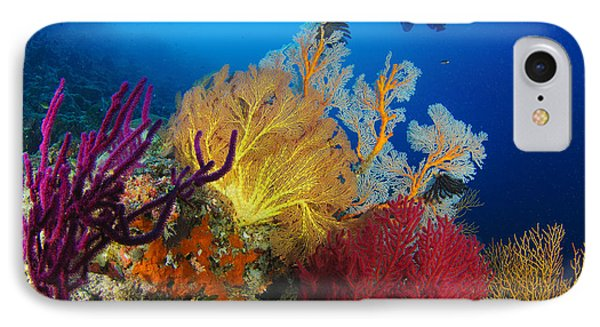 A Diver Looks On At A Colorful Reef Phone Case by Steve Jones