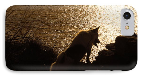 A Dogs View IPhone Case by Aidan Moran
