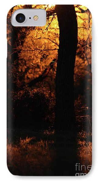 A Farewell To The Day IPhone Case