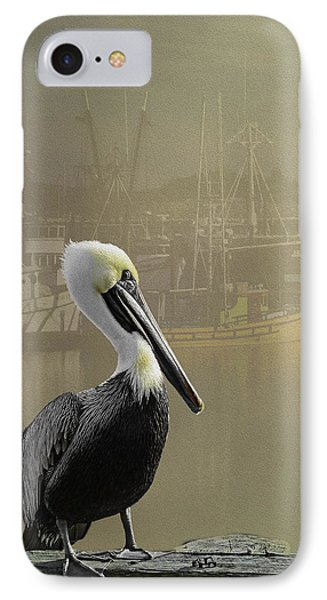 A Foggy Pelican Sunset IPhone Case by Diane Schuster