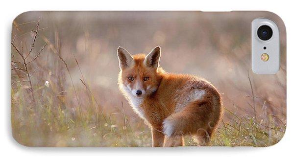 A Fox Called Pinoccio IPhone Case