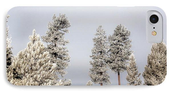 A Frosty Morning 2 IPhone Case by Janie Johnson