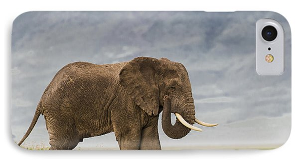 IPhone Case featuring the photograph A Gentle Giant by Sandra Bronstein