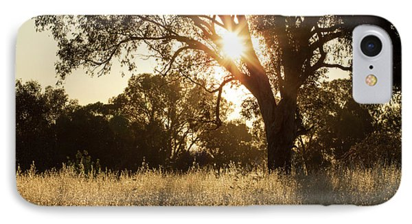 IPhone 7 Case featuring the photograph A Golden Afternoon by Linda Lees