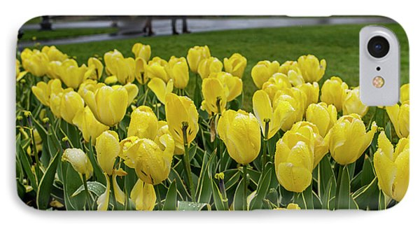 A Gray Rainy Yellow Day In The Public Garden IPhone Case by Toby McGuire
