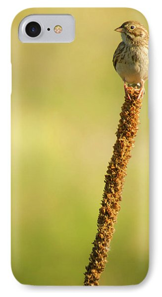 IPhone Case featuring the photograph A Great Sense Of Balance IIi by John De Bord