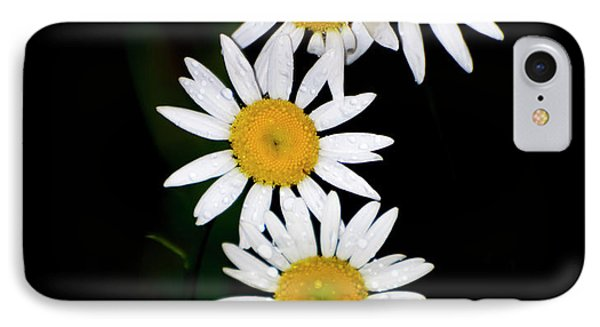 IPhone Case featuring the digital art A Group Of Wild Daisies by Chris Flees