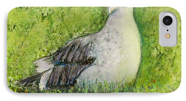 A Gull On The Grass IPhone Case by Laurie Morgan