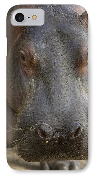 A Hippopotamus At The Sedgwick County Phone Case by Joel Sartore