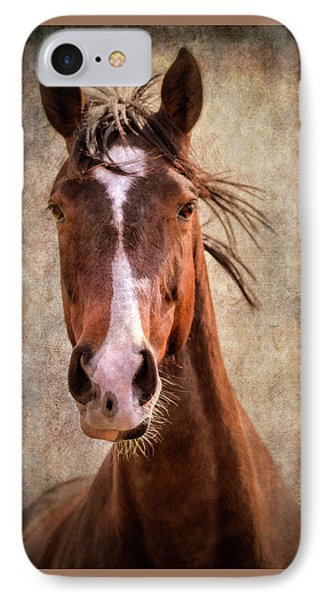A Horse Of Course IPhone Case
