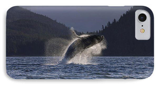 A Humpback Whale Leaps From The Waters IPhone Case