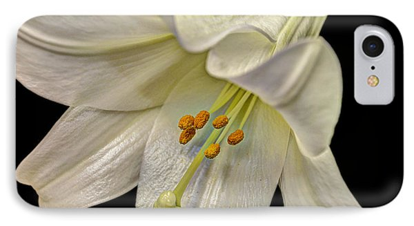 A Lily For Easter IPhone Case