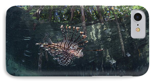 A Lionfish Swims Along The Edge IPhone Case by Ethan Daniels