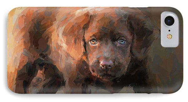 A Little Bit Of Chocolate Lab IPhone Case by Jai Johnson