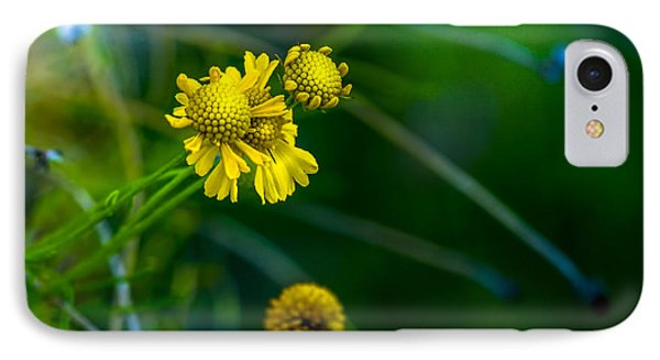 A Little Cheerfulness IPhone Case by Marvin Spates