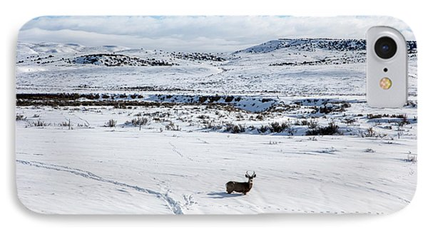 IPhone Case featuring the photograph A Lone Buck Deer In Carbon County, Wyoming by Carol M Highsmith