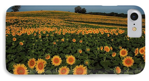 IPhone Case featuring the photograph A Lot Of Birdseed  by Chris Berry