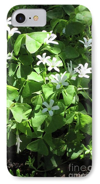 IPhone Case featuring the photograph A Lovely Spot For Shamrocks by Nancy Lee Moran