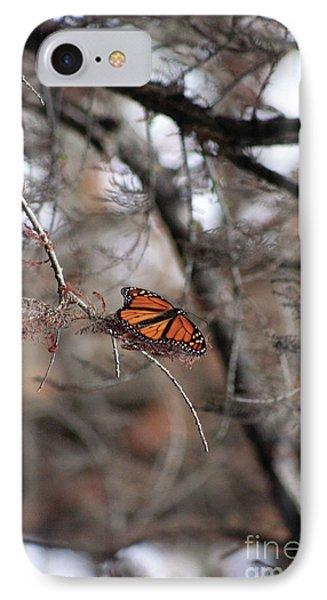A Monarch For Granny IPhone Case by Alycia Christine