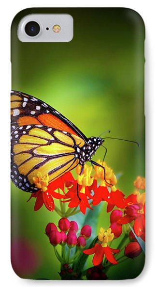 A Monarch In The Garden IPhone Case