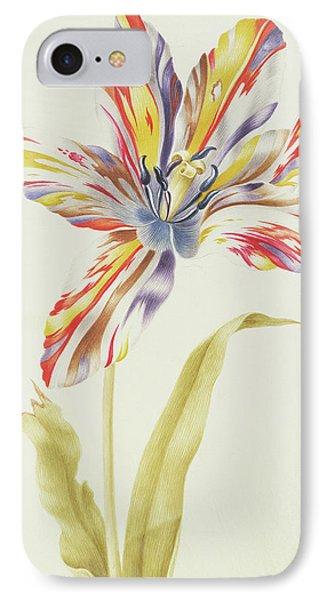 A Multicolored Broken Tulip IPhone Case by Nicolas Robert
