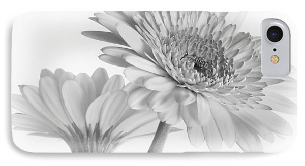 A Pair Of Daisies IPhone Case by David and Carol Kelly