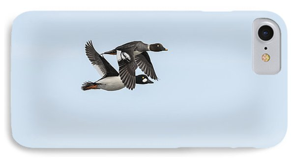 A Pair Of Golden Eye Ducks In Flight IPhone Case by Thomas Young
