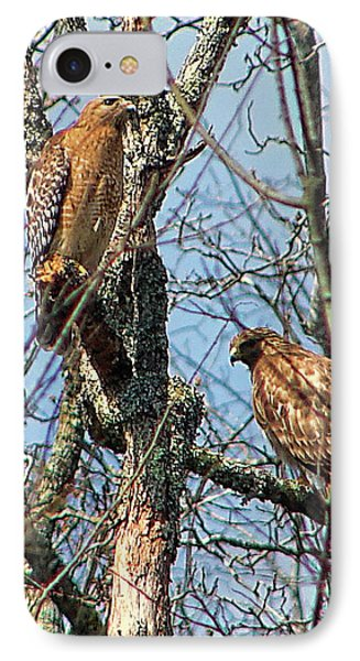 A Pair Of Hawks IPhone Case by Rick Friedle