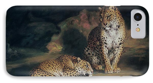A Pair Of Leopards IPhone Case by William Huggins